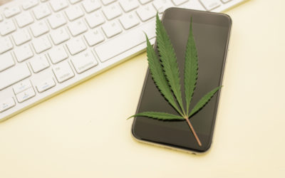 Cannabis Marketing Challenges and Opportunities